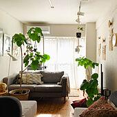 ソファ/観葉植物/IKEAカーテン/IKEA/白いカーテン...などのインテリア実例 - 2021-01-27 18:52:59