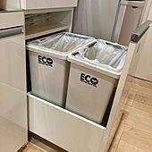 ゴミ箱/パモウナ 食器棚/キッチンのインテリア実例 - 2021-05-05 15:06:40