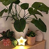 海外/観葉植物/照明/棚のインテリア実例 - 2020-11-24 07:30:23