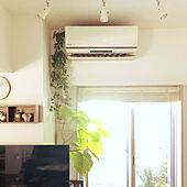 フェイクグリーン/ウンベラータ/stay home/無印良品/IKEA...などのインテリア実例 - 2020-04-10 13:20:02