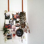 壁/天井/ディスプレイコーナー/刺繍枠アレンジ/ブラックボード/フェイクグリーン...などのインテリア実例 - 2020-04-02 12:37:06