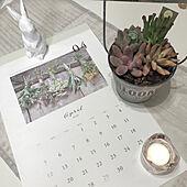 4月始まりのカレンダー/多肉植物/全然イベント期間ではありませんが/新商品買ったよ!/机のインテリア実例 - 2020-04-06 01:46:36
