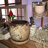 フェリシモ/ミルクティーグレージュ/ミルクペイントガーデン/陶器鉢/鉢リメイク...などのインテリア実例 - 2021-01-02 16:52:59