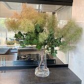 スモークツリー/リシェルSI/新築マイホーム/キッチンのインテリア実例 - 2021-06-21 23:18:51