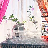 水栽培 観葉植物/100均/ガラス瓶/ガラス/アイビー増やし中...などのインテリア実例 - 2020-11-27 10:32:29