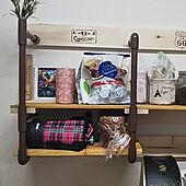 キッチン/塩ビ管/木材はサドルバンドで!/1×4材/DIY...などのインテリア実例 - 2020-03-14 13:31:07