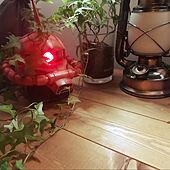 プチプラインテリア/アンティーク/多肉植物/100均/植物のある暮らし...などのインテリア実例 - 2021-04-18 13:21:19