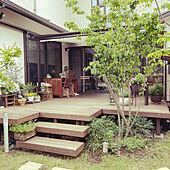 シンボルツリー/緑のある暮らし/庭の花/グリーンのある暮らし/植物のある暮らし...などのインテリア実例 - 2021-05-19 09:16:30