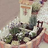 玄関/入り口/ガーデン雑貨/花壇寄せ植え/ウッドプランター DIY/外階段DIY...などのインテリア実例 - 2021-05-16 21:24:50