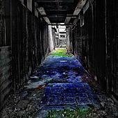 部屋全体/京都/路地のインテリア実例 - 2021-05-14 15:08:45