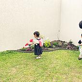 フリーデザインエッジ/子どもと暮らす/アナベル/ヒューケラ/花壇 手作り...などのインテリア実例 - 2021-06-17 23:06:38