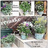花のある暮らし/雑貨/ガーデニング/ハンドメイド/DIY...などのインテリア実例 - 2020-04-01 23:54:33