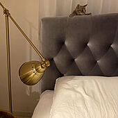 夜の写真/子猫/猫のいる部屋/猫のいる生活/猫とインテリア...などのインテリア実例 - 2020-07-08 01:18:27