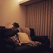 コーブ照明/バルミューダランタン/間接照明/いつもありがとうございます♡/RCの出会いに感謝♡...などのインテリア実例 - 2020-09-29 19:55:19
