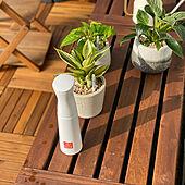 ガーデン雑貨/フロアデッキ/観葉植物/ガーデンファニチャー/IKEA...などのインテリア実例 - 2021-05-08 08:04:08
