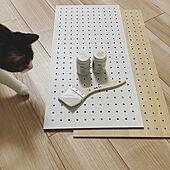 ダイソーのデザインボード/ごいし/2021.7.3/有孔ボード/保護猫...などのインテリア実例 - 2021-07-03 00:40:05