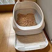 猫ちゃん想い/ニャンとも/ねこと暮らす。/ねこのいる日常/猫トイレ...などのインテリア実例 - 2021-06-13 15:27:37