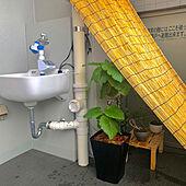 ベランダ/自動水やり機/観葉植物/自動散水機/すだれ...などのインテリア実例 - 2021-07-25 22:45:50