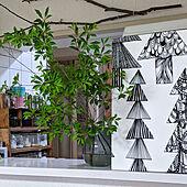 キッチン/植物のある暮らし/北欧雑貨/ドウダンツツジのある暮らし/ドウダンツツジ...などのインテリア実例 - 2021-05-16 07:22:56