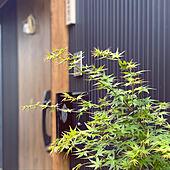 黒い家/紅葉/和風/狭小住宅/注文住宅...などのインテリア実例 - 2021-04-05 08:18:47