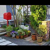 玄関/入り口/エントランス/庭/ガーデン/ガーデニング...などのインテリア実例 - 2020-04-10 16:34:48
