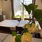 ダイニング/花のある暮らし/植物が好き/暮らしを楽しむ/お花大好き♡...などのインテリア実例 - 2021-05-08 13:18:38