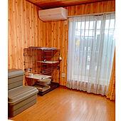 自動お掃除機能付き/TOSHIBA/エアコン設置/猫がいる幸せ/猫と暮らす部屋のインテリア...などのインテリア実例 - 2021-06-18 17:15:48