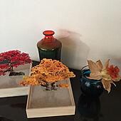 色が綺麗/カラーガラスの花瓶/組み立てミニ盆栽/オブジェ/綺麗な物...などのインテリア実例 - 2021-08-05 08:45:27