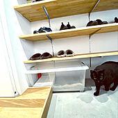 DIY/猫スペース/猫/猫トイレ/ホワイトインテリア...などのインテリア実例 - 2020-04-04 15:58:17