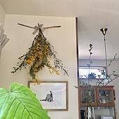 枝物/整理整頓/グリーンのある暮らし/RC山口♡/観葉植物...などのインテリア実例 - 2020-03-29 16:17:02