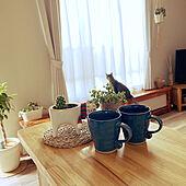 マグカップ/猫の鉢カバー/朝の風景/陶器/多肉植物...などのインテリア実例 - 2021-08-06 05:54:34