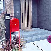 花の植え替え/ポスト下の花壇/黒い外壁/ボビポスト/玄関/入り口のインテリア実例 - 2020-04-01 23:14:42