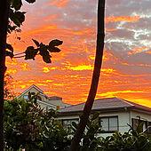 リビングからの眺め/祝日の朝/朝焼けが綺麗/リビングのインテリア実例 - 2021-09-23 05:46:50