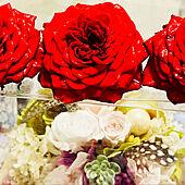 プリザーブドフラワー♡/花のある暮らし/いいね!ありがとうございます◡̈♥︎/ミニ薔薇咲きました/観ていただいてありがとうございます♪...などのインテリア実例 - 2021-05-13 08:23:57