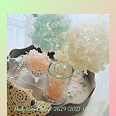 部屋全体/お花のある暮らし/紫陽花漂白/紫陽花/アナベル...などのインテリア実例 - 2021-07-27 20:43:48