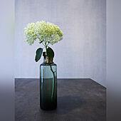 真鍮/グリーン/フラワーベース/花びん/ダイニング...などのインテリア実例 - 2021-06-18 19:31:38