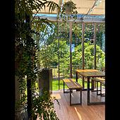 初夏/リモートワーク/ガーデンルーム/サンルーム/観葉植物...などのインテリア実例 - 2021-06-09 17:28:42