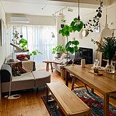 パイン材の床/ペンダントライト/観葉植物/ウンベラータ/絨毯...などのインテリア実例 - 2020-11-26 07:33:43
