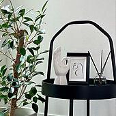 観葉植物/グリーンのある暮らし/モノトーンインテリア/観葉植物のある暮らし/アートのある暮らし...などのインテリア実例 - 2021-09-27 19:23:54