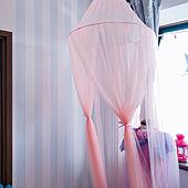 ストライプ/ストライプの壁紙/壁紙DIY/壁紙/ゆめかわいい...などのインテリア実例 - 2020-03-03 20:09:51