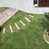 部屋全体/芝生の庭/ステップストーン/パパ作/シンボルツリー...などのインテリア実例 - 2021-06-23 20:48:16
