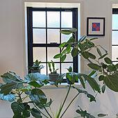拍子窓/DIY/窓/観葉植物のある部屋/花のある暮らし...などのインテリア実例 - 2021-07-24 16:42:11