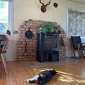 朝陽が差し込む/薪ストーブのある部屋/ハンティングトロフィー/鹿のハンティングトロフィー/植物...などのインテリア実例 - 2021-08-06 07:50:40