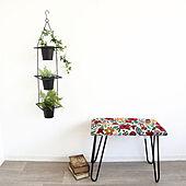 植物/玄関/スツール/ガーデニング/花柄...などのインテリア実例 - 2021-07-19 09:00:16