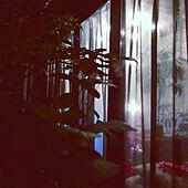 カーテン/サンルーム/玄関/入り口のインテリア実例 - 2021-06-23 21:27:41