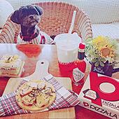 机/いいね&フォローありがとうございます♡/愛犬のお祝いに/誕生日/ワンコケーキ...などのインテリア実例 - 2021-05-16 17:01:06