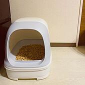 猫ちゃん想い/ニャンとも/ねこと暮らす。/ねこのいる日常/猫トイレ...などのインテリア実例 - 2021-06-12 22:44:50