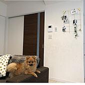 ソファ/引き戸/LIXIL/IKEA/ミールヘーデン...などのインテリア実例 - 2021-05-08 18:07:18