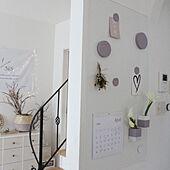壁/天井/LIXIL/壁で遊ぶ/しとやかな藤の色/壁紙屋本舗...などのインテリア実例 - 2020-03-30 07:32:12