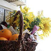 今年もありがとうございました♡/ミモザ/いつもありがとうございます♡/おうちカフェ/玄関/入り口のインテリア実例 - 2021-03-07 15:03:54
